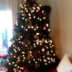 Portland condos Christmas tree